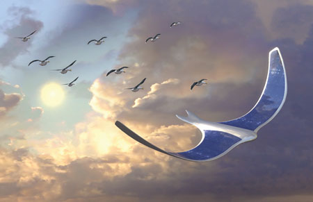Electroactive Polymer (EAP) Ornithopter