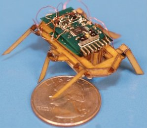 SMA-Driven Hexapod Robot Cockroach