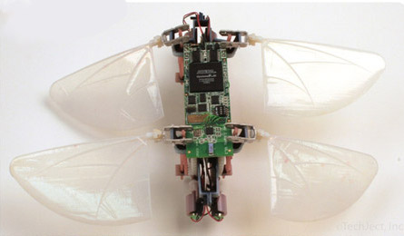 Robot Dragonfly by TechJect