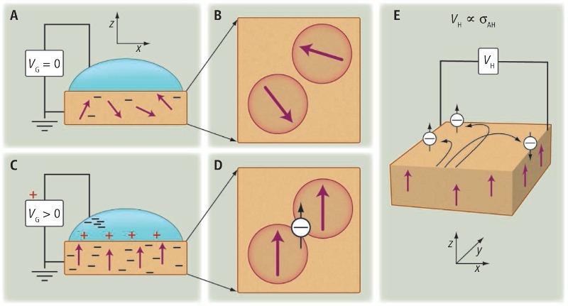 Tunable ferromagnetism (magnet)
